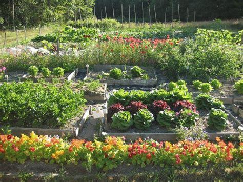 garden organization herb garden