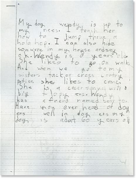 opinion essay sles third grade nonfiction writing sles expository