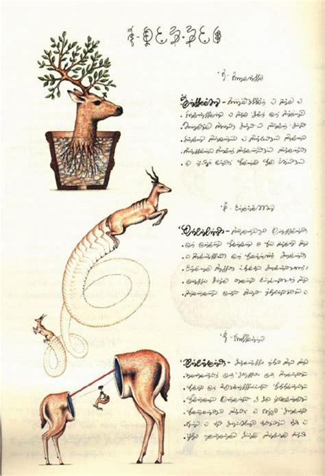 libro codex seraphinianus reeditan el codex seraphinianus el libro m 225 s raro del mundo trasd 243 s
