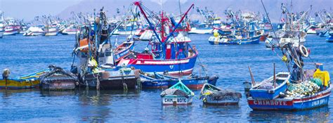 peru seafood fishing industry companies d j info peru implements emergency measures to support fishing