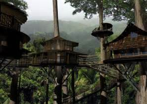 treehouse community eco friendly houses eco friendly treehouse community