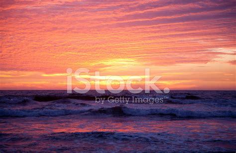 devin cutter sunset sunset books carlsbad sunset stock photos freeimages