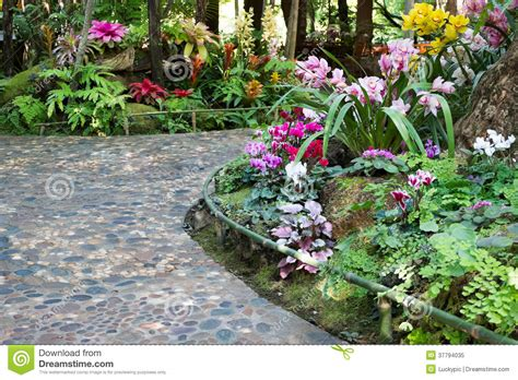 footpath flowers footpath with beautiful flowers in the beautiful garden royalty free stock photo image 37794035