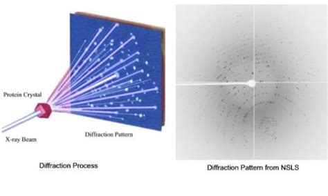 protein x diffraction pattern diffraction pattern free patterns