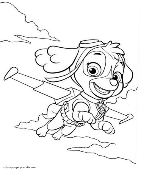 paw patrol coloring pages sky www imgkid com the image