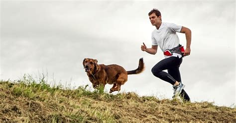 dogs to run with how to safely run with your s journal