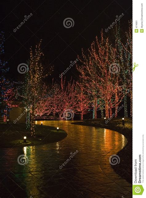 christmas lights illuminating walkway stock image image