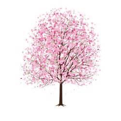 pink cherry blossom tree vector dragonartz designs we