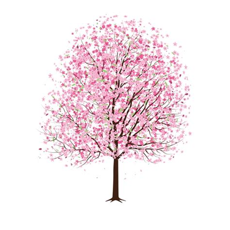 pink cherry blossom tree vector dragonartz designs we