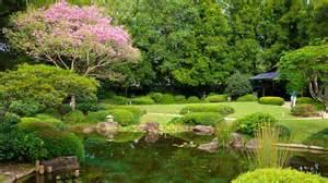 garden images brisbane botanic gardens brisbane queensland attraction expedia com au