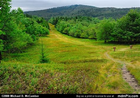 Bald Knob Wv by Bald Knob Trail Picture 015 September 4 2006 From