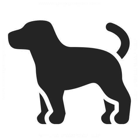 dog icon iconexperience professional icons  collection