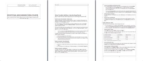 professional report template business professional report drureport813 web fc2