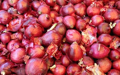 onion daughter maharashtra man chokes daughter to death with onion for