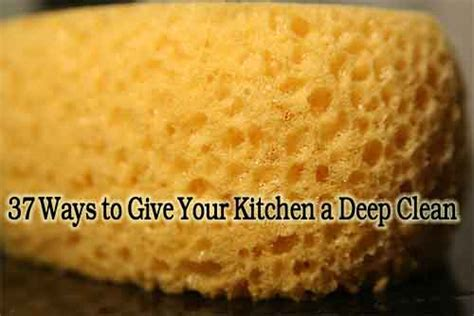 37 ways to deep clean the kitchen trusper 37 ways to give your kitchen a deep clean lil moo creations