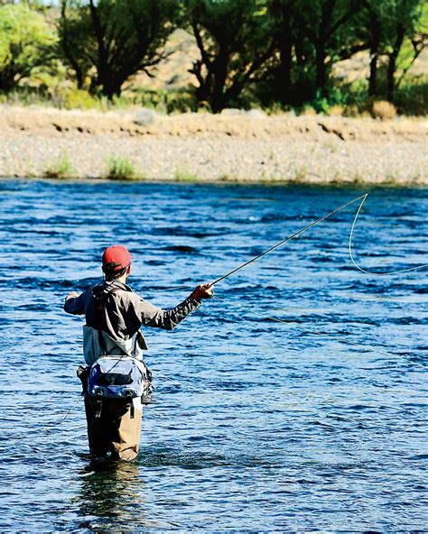 1000 images about fly fishing 100 fly fishing home decor delphi club abaco