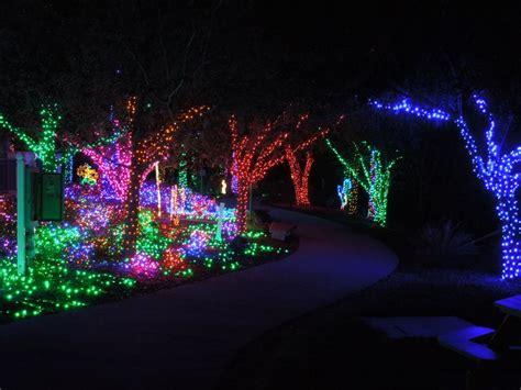 largo botanical gardens christmas lights florida botanical gardens all aglow with lights pinellas county tbnweekly