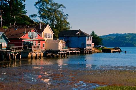 scow bay oyster farm 25 best ideas about marin county on pinterest marin