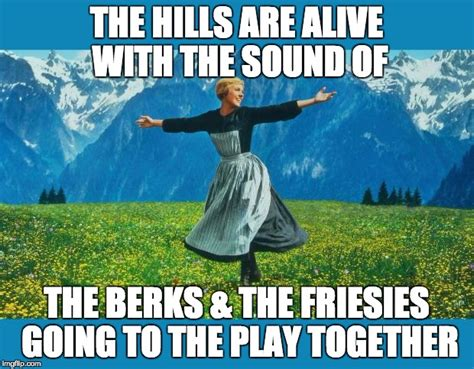 Memes With Sound - the sound of music happiness imgflip