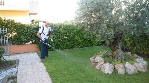 trattamento antizanzare giardino disinfestazione zanzare verona disinfestazioni vedovi