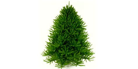 artificial christmas trees made in usa