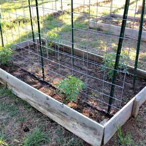 benefits of raised garden beds top 10 benefits of raised garden beds organic gardening mother earth news