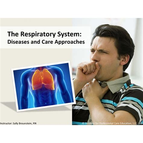 the respiratory system aquire solutions