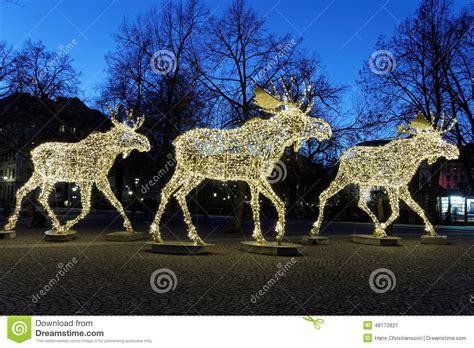 outdoor light up moose moose floc made of led light stock image image