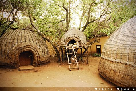 traditional zulu homes at the lesedi cultural