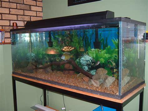 30 gallon fish tank 70   Acrylic Fish Tanks Bubbling Panels Coffee Table Aquariums Corner 2017