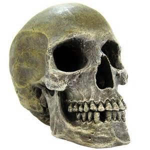 Home AQUARIUM Aquarium Decor Aquarium Skull & Bones Ornaments Exotic
