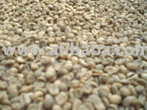 Green Coffee Premium Arabica Aceh best aceh arabica coffee beans products indonesia best aceh arabica coffee beans supplier