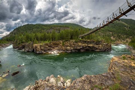 kootenai falls swinging bridge ross creek cedars kootenai falls giant trees swings