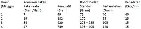 Harga Pollard Terbaru mengenal ransum ayam kung pedaging budidaya ayam