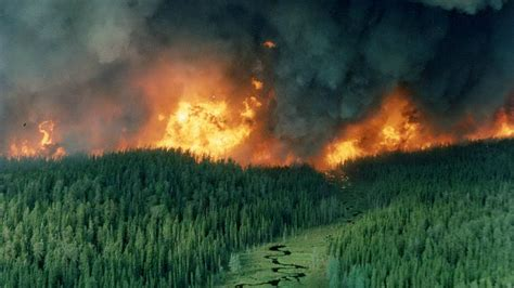 Southwestern Houses Climate Change Means More Forest Fires In Ontario Here S