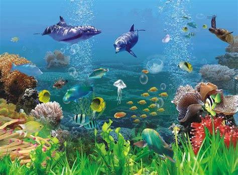 wallpaper pemandangan bawah laut kartun pemandangan