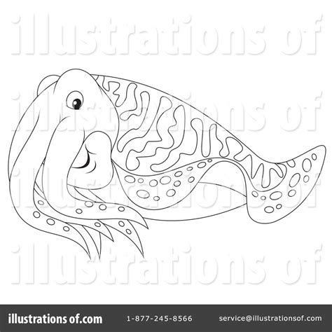 coloring pages cuttlefish sketch coloring page