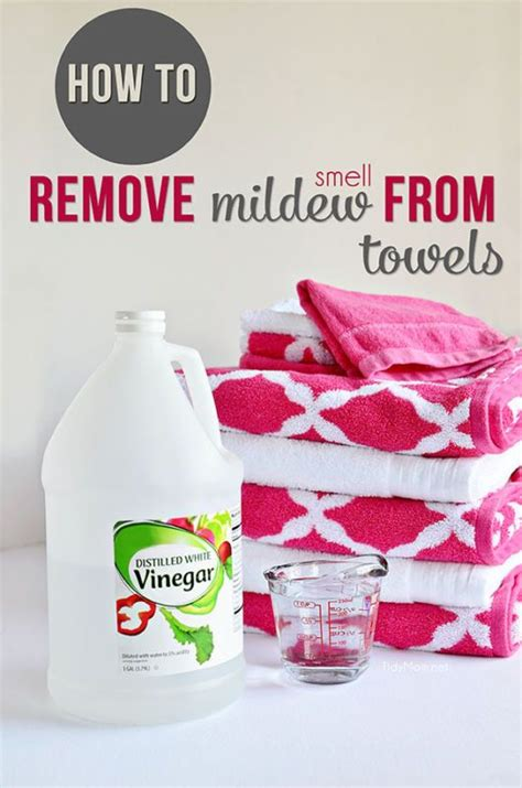 Remove Smell From 15 must cleaning tricks finest 10 ideas
