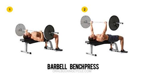 bench press cycle chest workouts top 6 chest exercises for mass gain