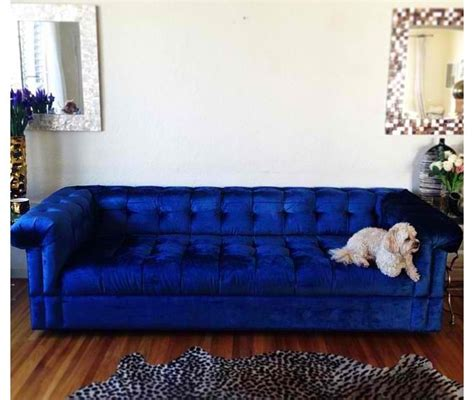 Royal Blue Furniture Living Room by The Blue Cave Ideas Blue