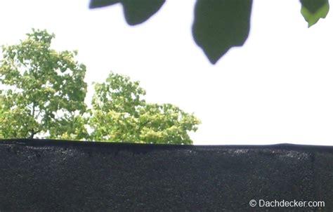 Bitumenbahn Selbstklebend Verlegen by Selbstklebende Dachpappe Schneller Verlegen Dachdecker