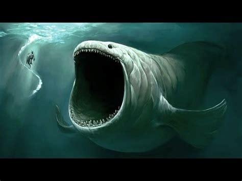imagenes de unicornios marinos los 5 monstruos marinos m 225 s grandes del mundo youtube