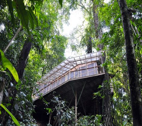treehouse community sustainable treehouse community in costa rican jungle