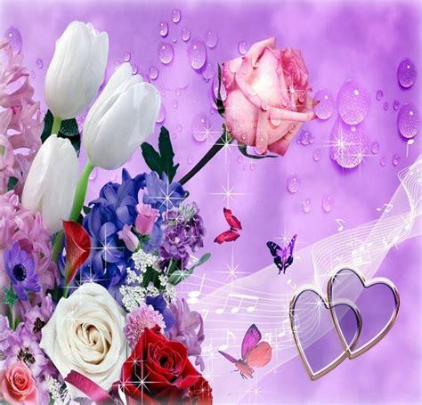 imagenes rosas gratis para descargar fotos de flores preciosas imagenes para mama