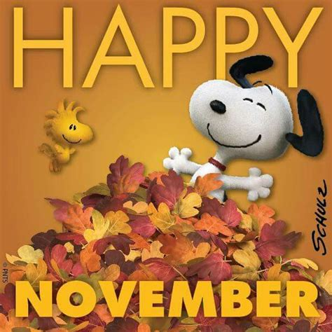 happy november st   day  history aarp
