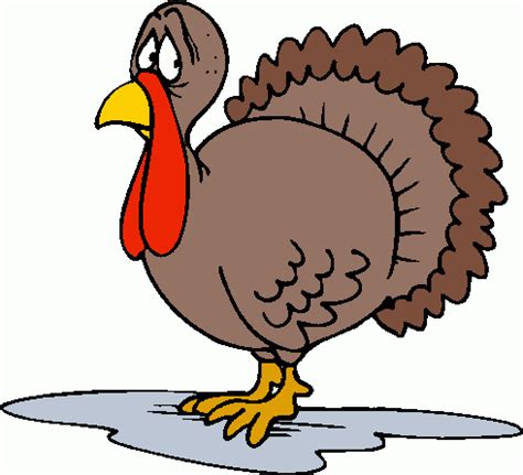 can you give a turkey thanksgiving turkey gif clipart best