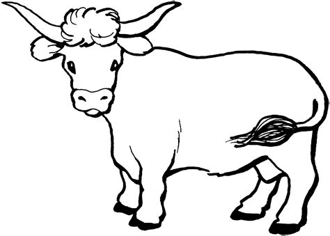 coloring book pages cow cow coloring page dr odd