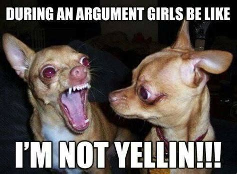 Girls Be Like Memes - funny chihuahua meme girls be like animals