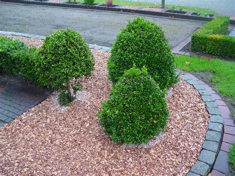 Bilder Gartengestaltung Zierkies