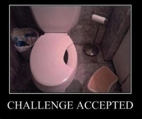 Funny Toilet Memes - the best and worst of quot challenge accepted quot 30 pics